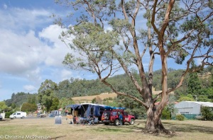 Camp spot at Franklin on the Huon River