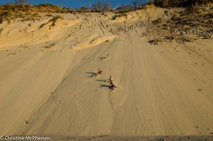 Sliding down the sand dunes at Macquarie Heads