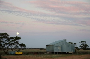 Looking towards the shearing shed on our first night on the farm