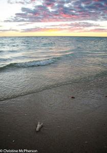 An evening on the beach on Ningaloo Reef