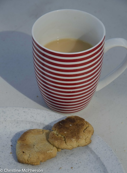 A cup of tea without a biscuit is a missed opportunity  ... specially cooked in the grill