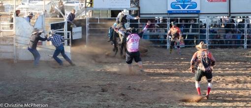 The BIG bull ride