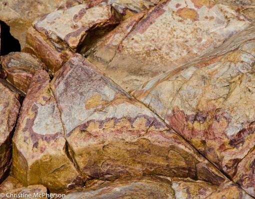 Rock textures at Ormiston Gorge